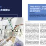 Avances actuales y perspectivas de futuro en torno a las tecnologías  de litio en Argentina